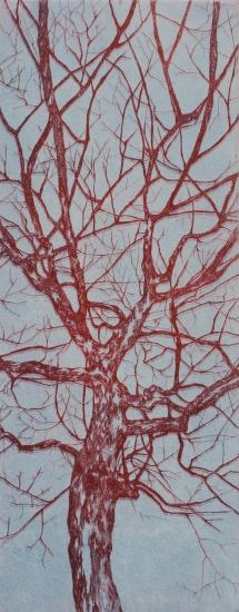"""Série arbre couleur // """"bleu gris et rouge"""", 2014"""