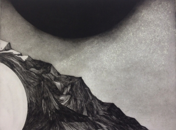 """""""Soleils trompeurs"""", 2014"""