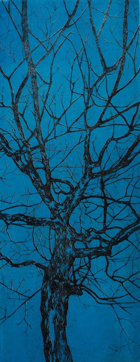 Série arbre couleur, 2014
